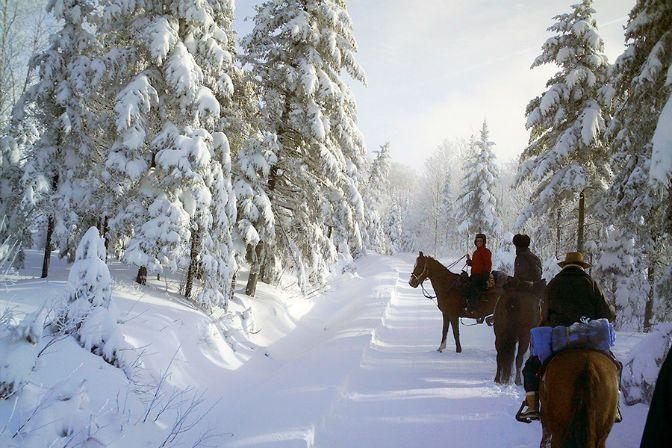 Randonnée hivernale à dos de cheval
