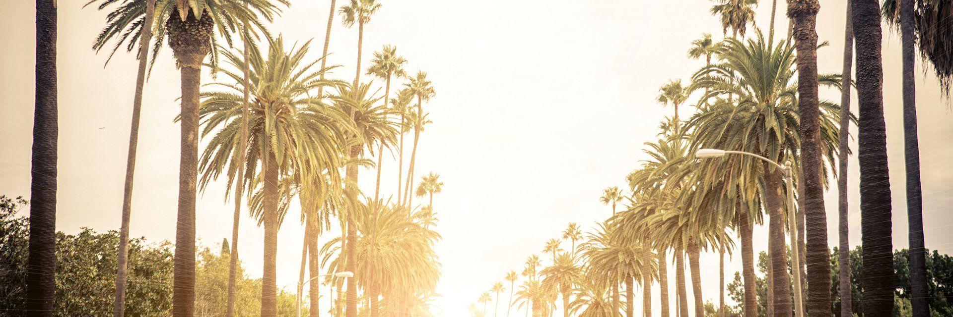 Splendeurs de la Californie