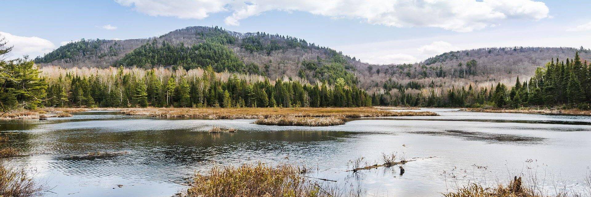 Abitibi-Témiscamingue et Baie-James