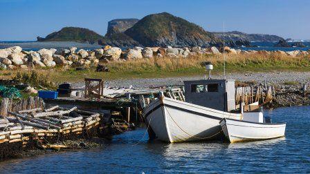 Terre-Neuve et Saint-Pierre-et-Miquelon