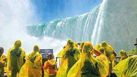 Forêt Boréale et Chute du Niagara