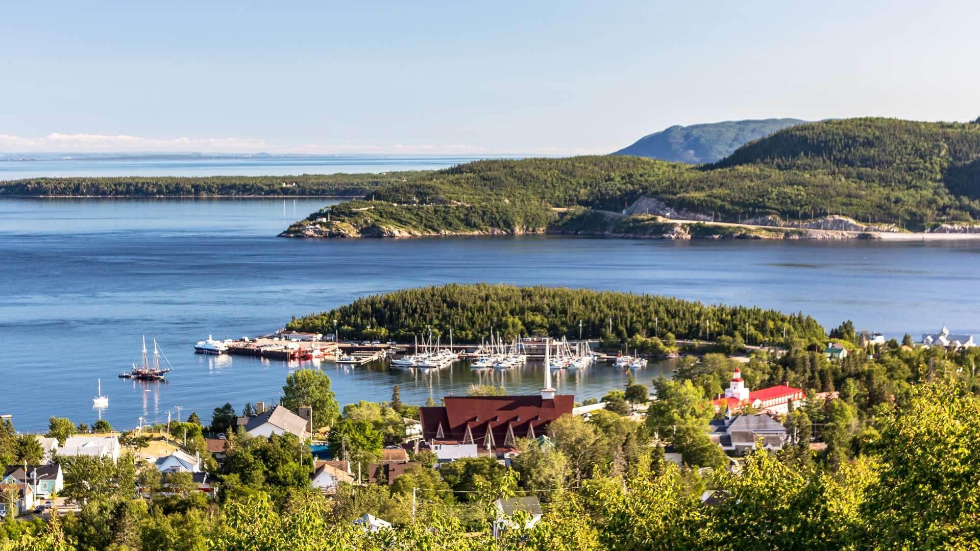 La découverte du Fjord et du géant des mers