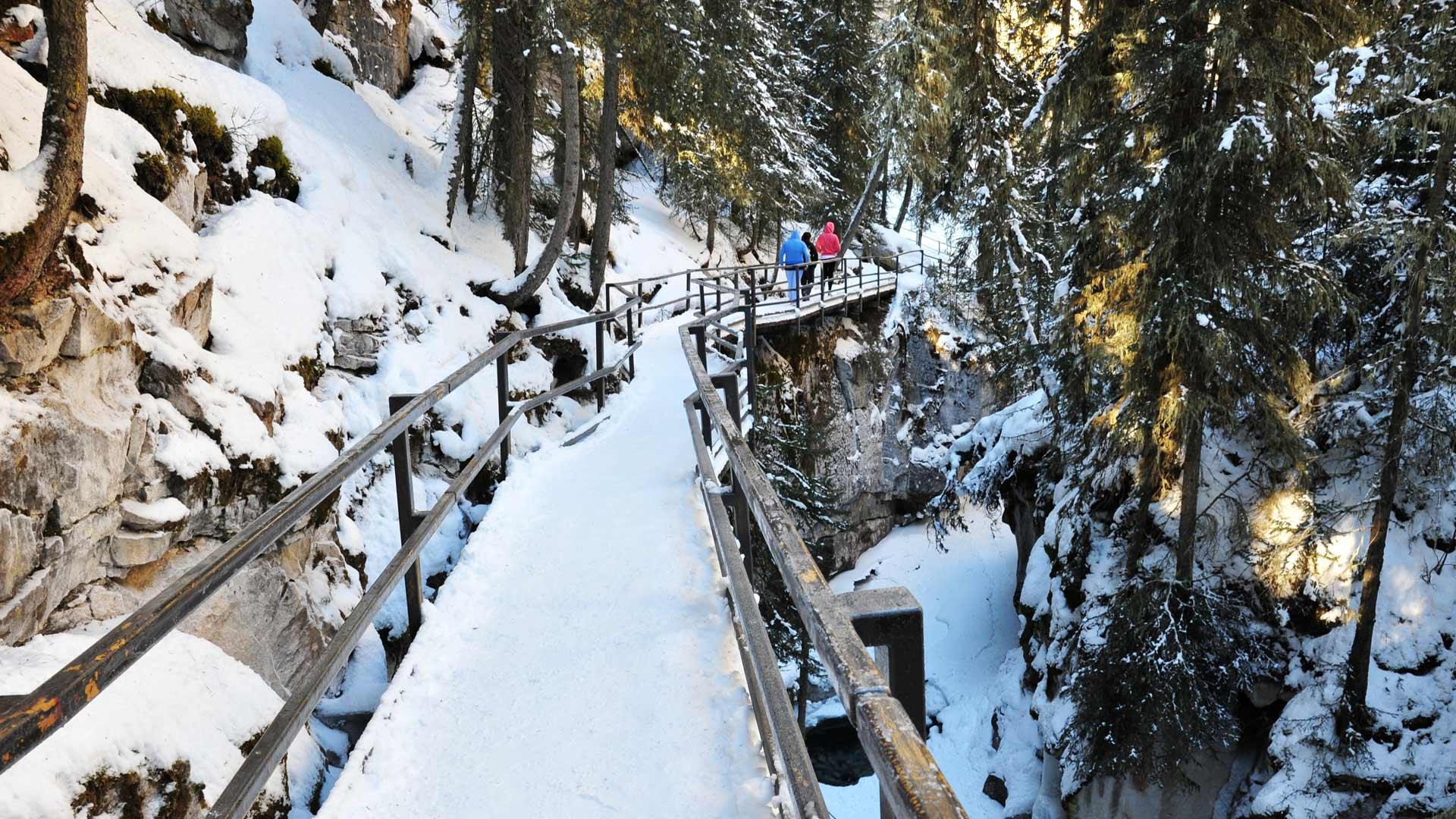 Magie hivernale à Banff