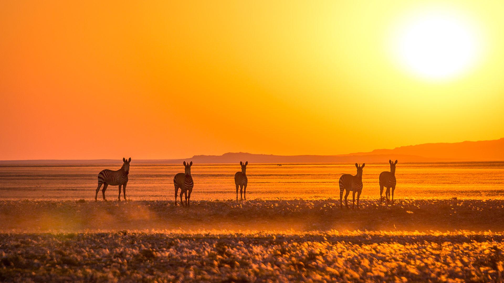 Duo Afrique du Sud et Namibie en croisière