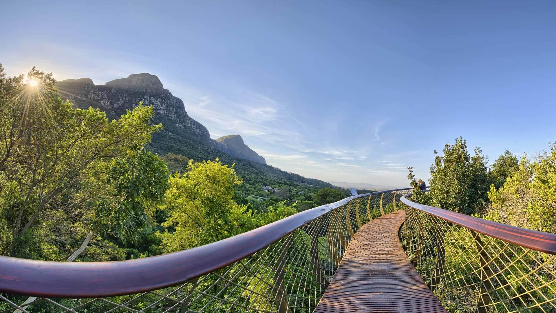 Safaris et croisière en Afrique du Sud et Namibie
