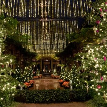 Jardins de Longwood à Noël avec Larry Hodgson
