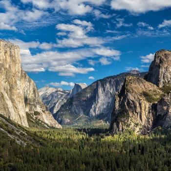 Parcs nationaux américains et croisière sur la côte californienne