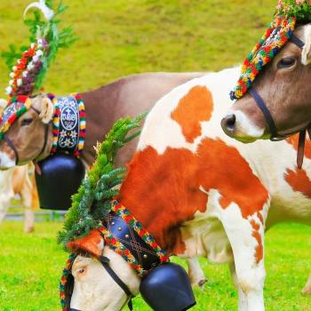 Fêtes traditionnelles en Allemagne et en Autriche