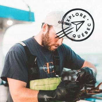 Expédition de pêche au homard aux Îles de la Madeleine