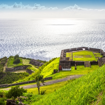 Jardins des Antilles avec Larry Hodgson