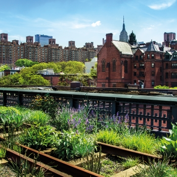 Les jardins secrets de New York